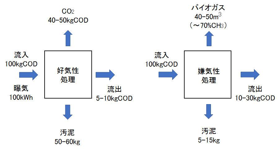 aerobic vs anaerobic COD balance