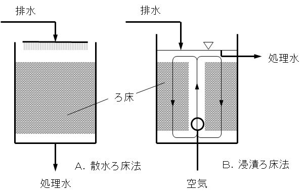 biofilm_process