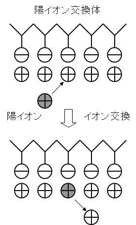 ion_exchange