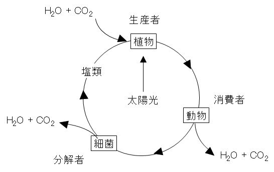 material_circulation