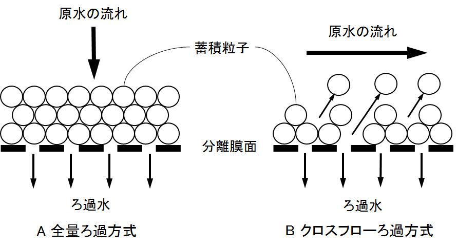 membrane_flow
