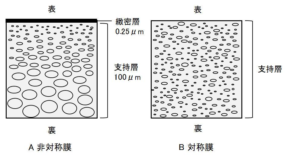 membrane_structure
