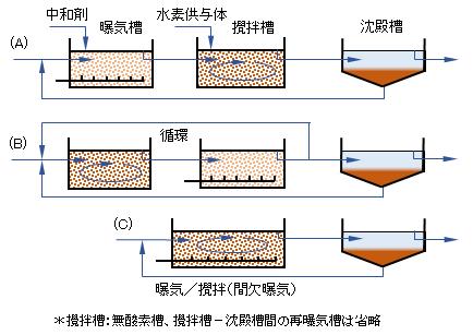 biol-nitrogen-removal(1)