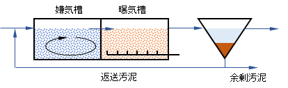 biol-phosphorus-removal-proc