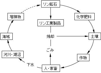 phosphorus-cycle-system