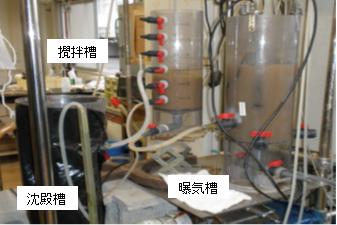 single-sludge-nitrogen-removal-reactor