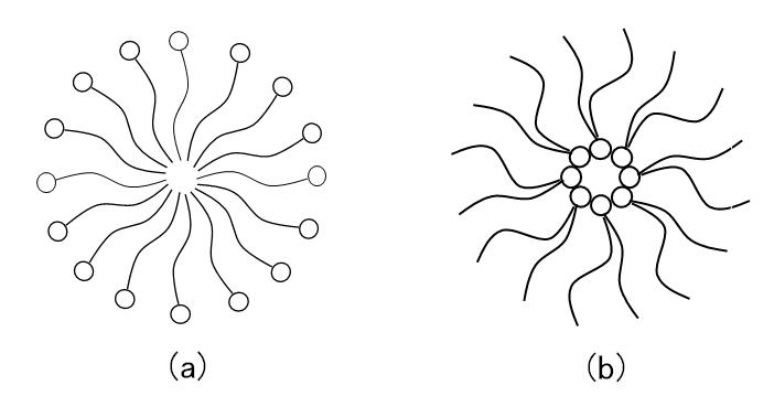 surfactant-micelle