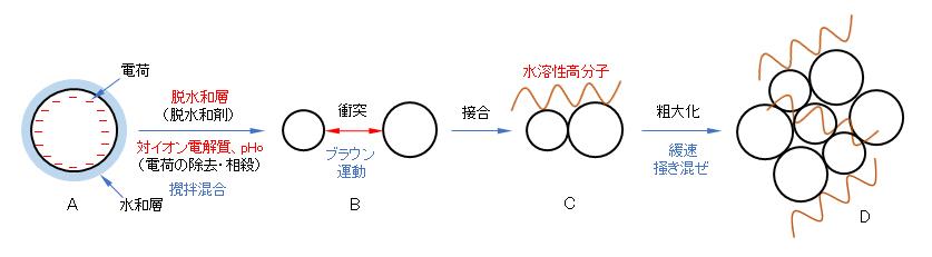 coagulation-process-model