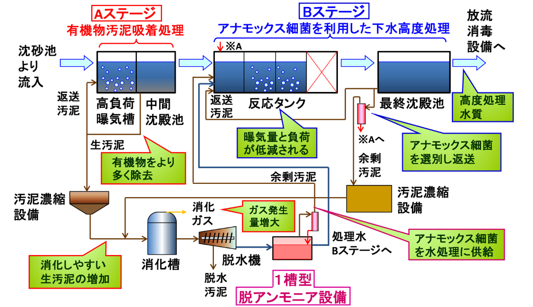 one-reactor-anammox
