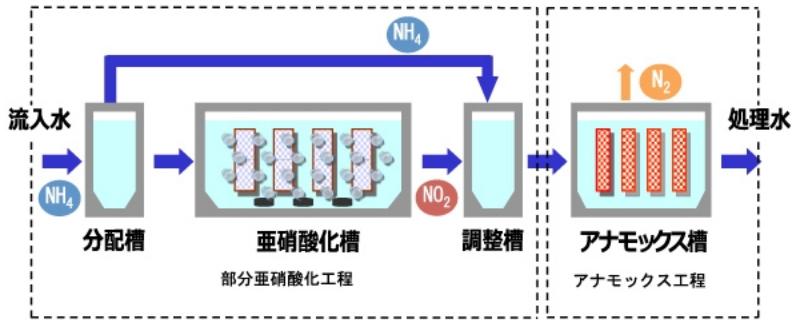 two-reactors-anammox
