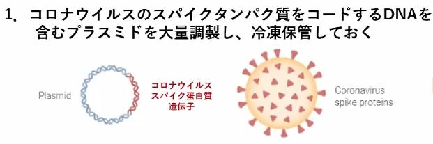 miyasaka-jnpc-1