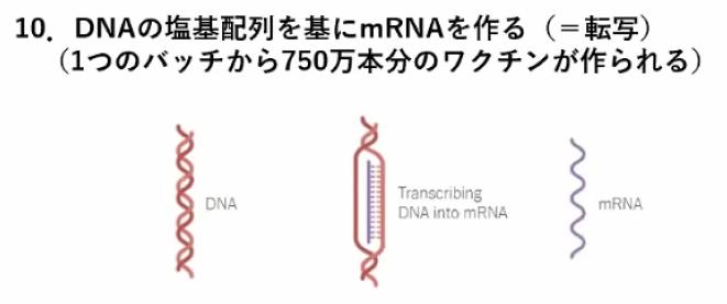 miyasaka-jnpc-10