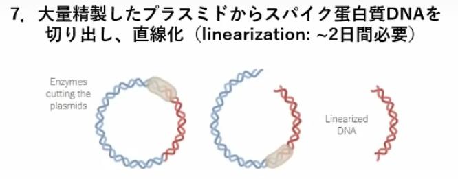 miyasaka-jnpc-7