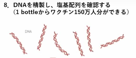 miyasaka-jnpc-8