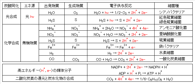CO2-assimilation